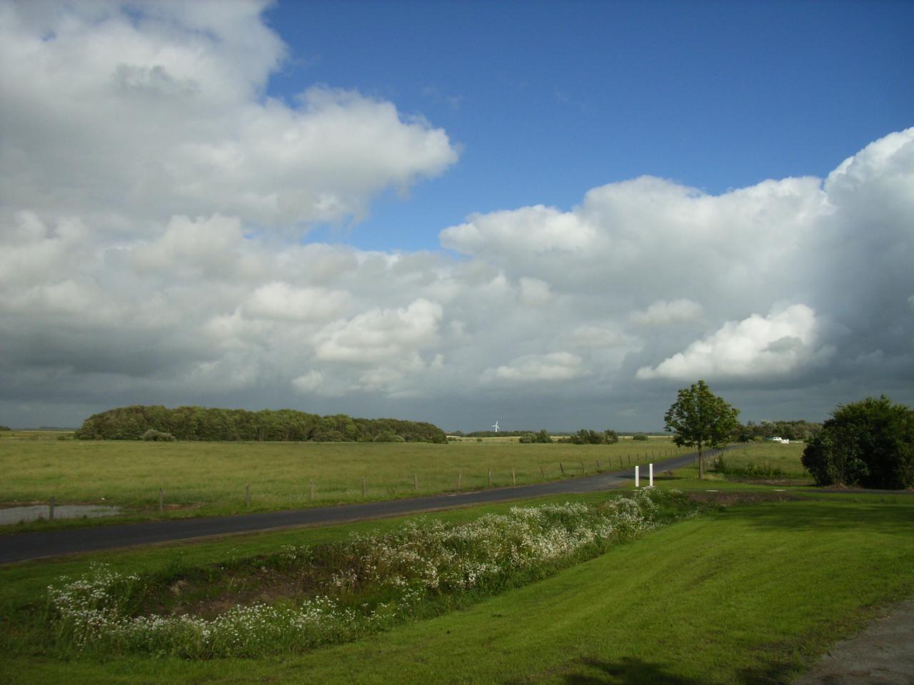 Blick auf die nordfriesische Landschaft