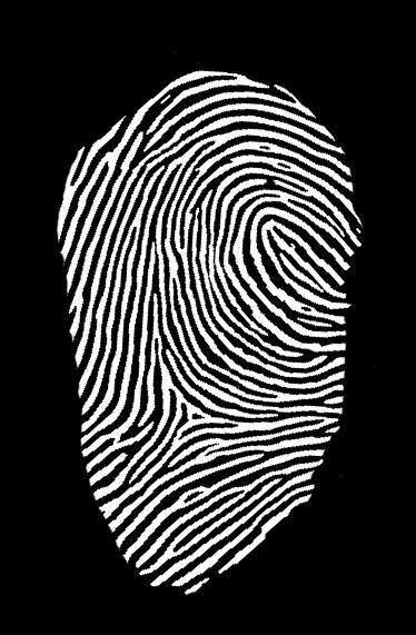 Digitaler Nachbau eines Schäuble-Fingerabdrucks